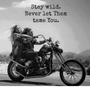stay-wild-never-let-them-tame-you-5248439.png