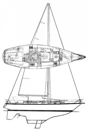 bombay_explorer_44_drawing.jpg
