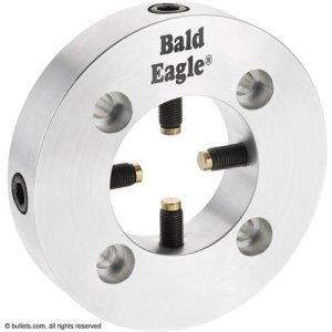 Bald Eagle Spider.jpg